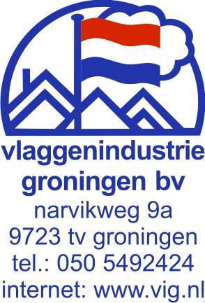 Logo vlaggenindustrie groningen